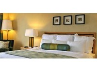 Hotel Komfort Terraces Bangalore (6) - Hotels & Hostels
