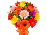 Avon Bangalore Florist (1) - Regalos y Flores