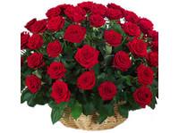 Avon Bangalore Florist (7) - Regalos y Flores