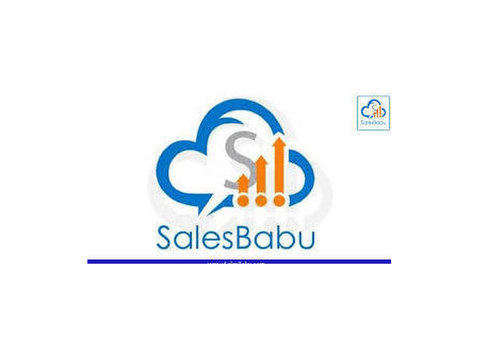 SalesBabu Online CRM Software - Consultancy