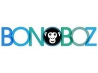 Bonoboz Marketing Services Pvt. Ltd. - Marketing & PR