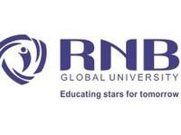 Best Btech University Engineering Rajasthan - Universities