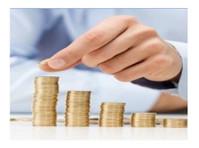IMPERIAL MONEY PVT. LTD. (3) - Financial consultants