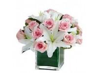 Flowers N Emotions (8) - Gifts & Flowers
