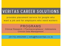 The Veritas Career Solutions Pvt Ltd (1) - Consultancy