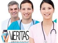 The Veritas Career Solutions Pvt Ltd (3) - Consultancy