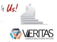 The Veritas Career Solutions Pvt Ltd (8) - Consultancy