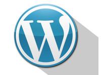 SAG IPL (4) - Webdesign