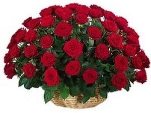 Avon Chennai Florist - Gifts & Flowers