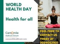 Camomile Healthcare Ventures (8) - Consultancy