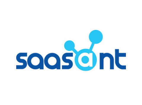 SaasAnt Infotech Pvt Ltd - Business Accountants