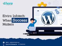 Elvira infotech Pvt. Ltd. (2) - Webdesign