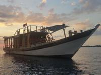 Sailindo (2) - Yachts & Sailing