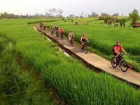 Ebikesbali - Ubud Bike Tour Rental (2) - Travel sites