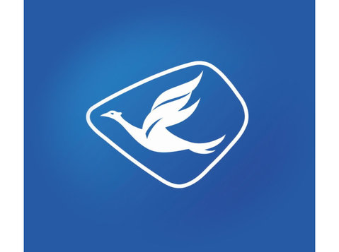 Blue Bird Taxi - Car Transportation