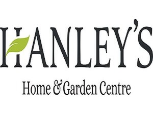 Hanleys of Cork - Furniture