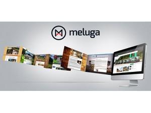 Meluga - Webdesign