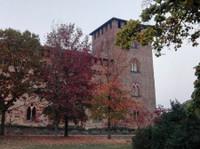 Speakita - Fun Online Italian Classes for Beginners - Online courses