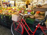 Good Tastes of Tuscany (4) - City Tours