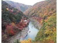 Japan Custom Tours (6) - Travel sites
