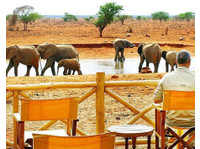 Diani Wilderness Tours and Safaris/logistics (4) - Reisebüros