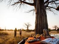 Cheetah Revolution Safaris (1) - Biura podróży
