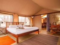 Cheetah Revolution Safaris (5) - Biura podróży