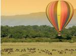 Wildlife Safari Exploreans (2) - Travel Agencies