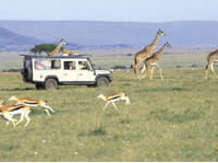 Inside Africa Budget Safaris (1) - Travel Agencies