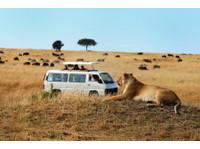 Inside Africa Budget Safaris (8) - Travel Agencies