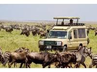 Africa Venture Safaris (4) - Travel Agencies