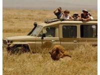 Wild Race Africa Safari Tours - African Safari Holidays Co. (1) - Travel Agencies