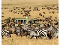 Wild Race Africa Safari Tours - African Safari Holidays Co. (6) - Travel Agencies