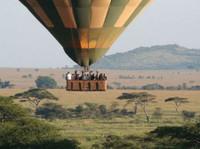 Adventure Safari Bookers (6) - Travel Agencies