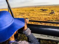 Kenya Expresso Tours and Safaris ltd (6) - Biura podróży