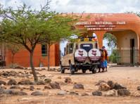 Kenya Expresso Tours and Safaris ltd (8) - Biura podróży