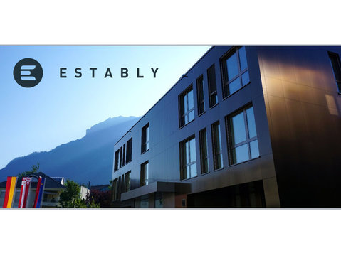 Estably Asset Management - Financial consultants