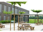 St George's International School, Luxembourg A.S.B.L. (1) - International schools