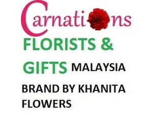 Carnations - Florists and Gifts - Gifts & Flowers
