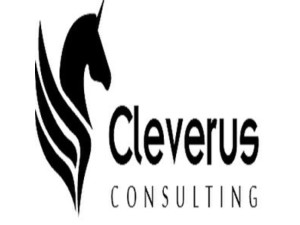 Cleverus Seo Malaysia, Digital Marketing - Advertising Agencies