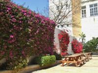 NSTS Malta (8) - Language schools