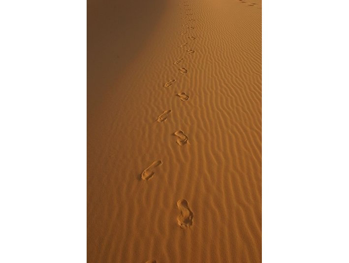 www.visit-ergchebbi-desert.com - Travel Agencies