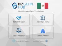 Biz Latin Hub - Mexico (1) - Commercial Lawyers