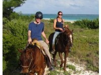 Cancun Adventure Tours (2) - Travel sites