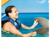 Cancun Adventure Tours (7) - Travel sites