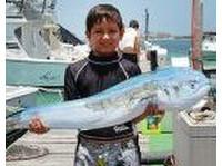 Deep Sea Fishing in Cancun (4) - Yachts & Sailing