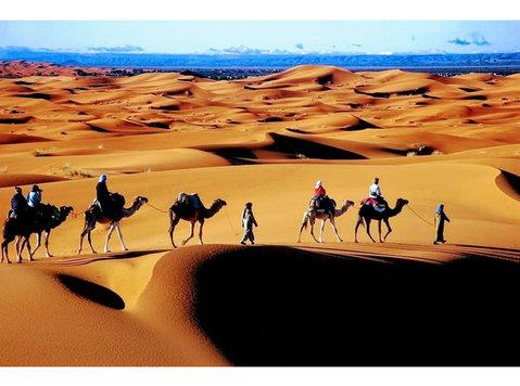 Sahara Holiday Tours - Agencias de viajes