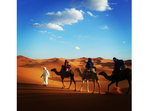 enjoying.morocco.tours - Advertising Agencies