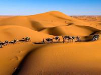 Sunny Excursion Marrakech - Reisbureaus