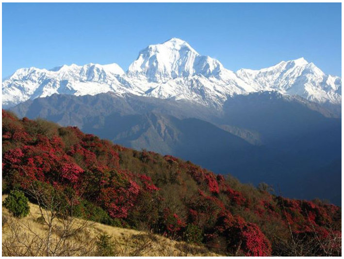 Trekking in Nepal - Travel Agencies